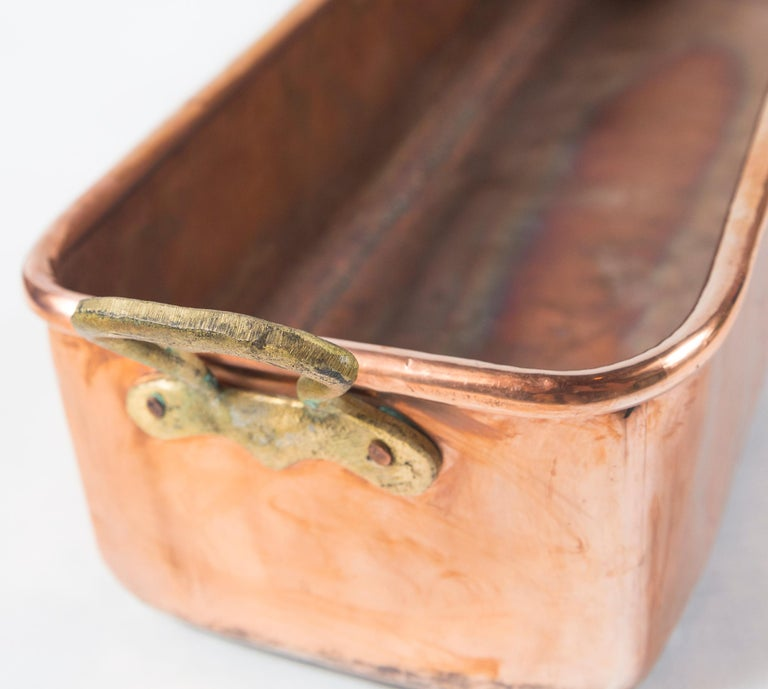 Vintage Copper Fish Pan, Early 20th Century 2