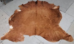 Vintage Cow Hide From Texas