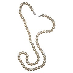 Vintage Cultured Akoya Pearl Necklace Pearls