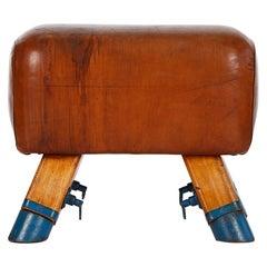 Vintage Czech Leather Turnbock Gym Stool Bench Drukov, 1950s
