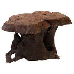 Vintage Dark Brown Tree Trunk Coffee Table