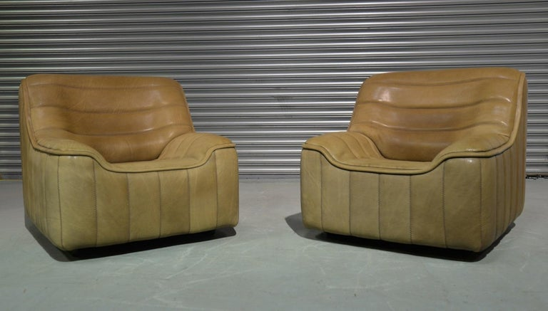 Vintage De Sede DS 84 Neck Leather Armchairs, Switzerland, 1970s For Sale 1