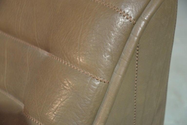 Vintage De Sede DS 84 Leather Sofa, Switzerland, 1970s For Sale 12