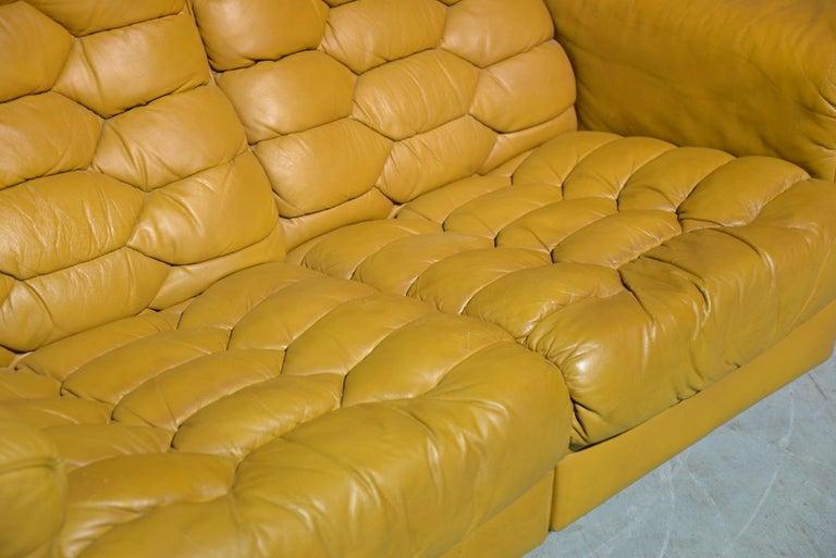 Vintage De Sede DS-P Sofa Set in Cognac Leather by Robert Haussmann, 1970s For Sale 7