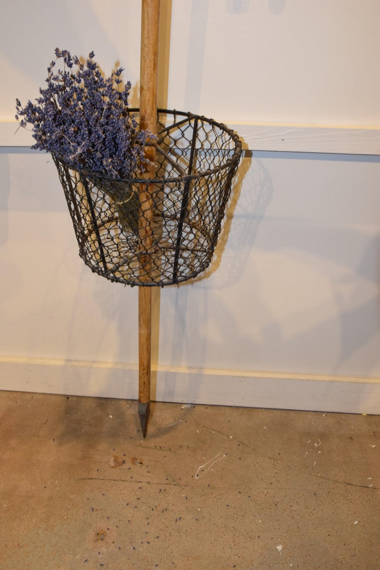 Iron Vintage French Garden Cane with Gathering Basket For Sale
