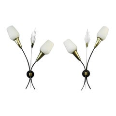 Vintage French Pair of Double Wall Sconces 1950s, Possibly 2 Pairs