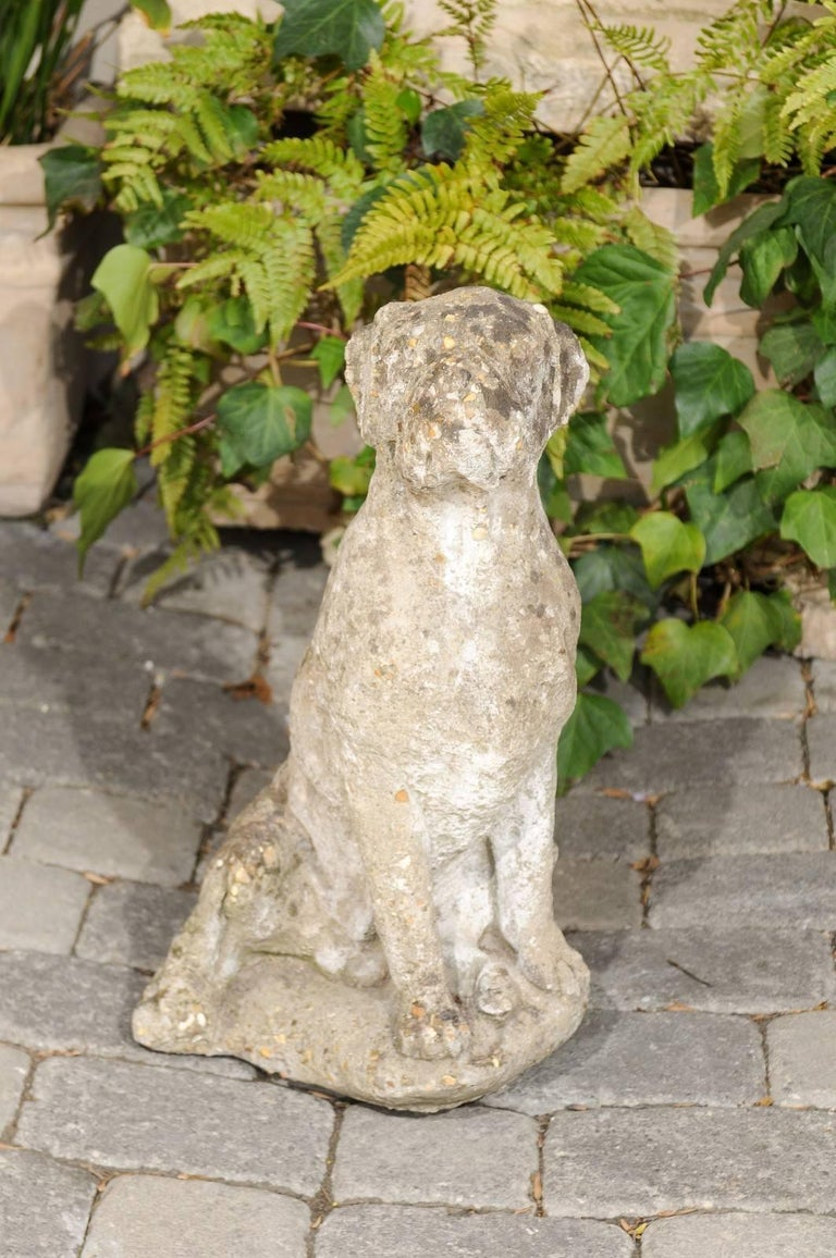 A French vintage stone dog sculpture with weathered appearance from the first half of the 20th century. This French statue depicts a dog, obediently sitting in a pose that will be not be unfamiliar to dog owners. With its weight shifted to the left,