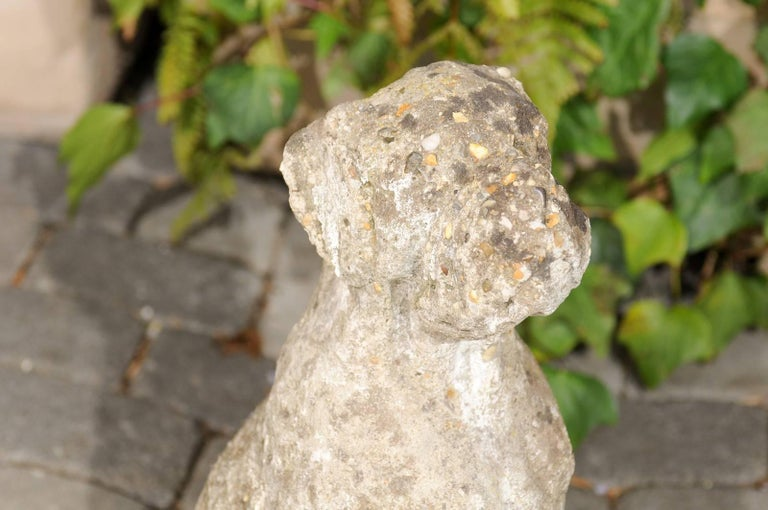 Vintage French Stone Sculpture of Dog in Sitting Position from the 1920s-1940s For Sale 5