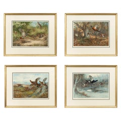 Vintage Game Bird Prints, Colotypes by Archibald Thorburn 'The Seasons'