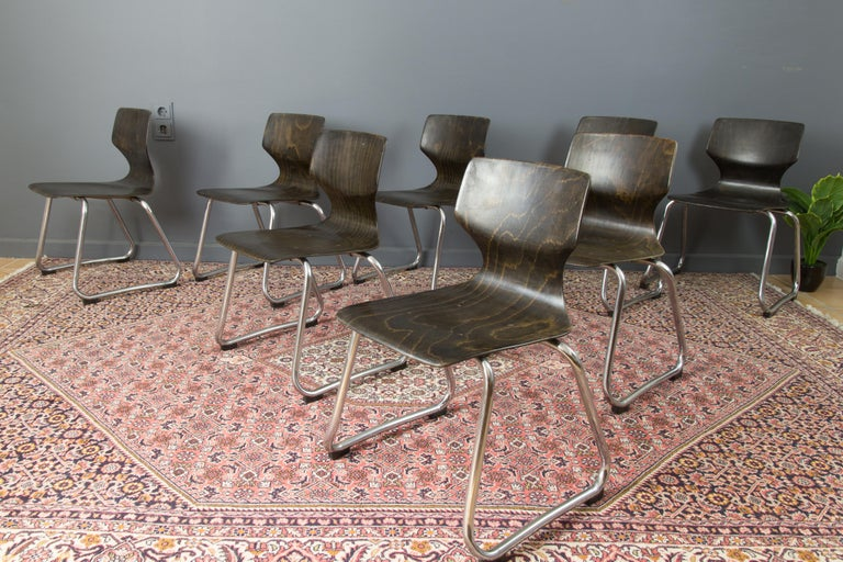 Vintage German Chairs by Elmar Flötotto for Pagholz Flötotto, 1970s, Set of 8 For Sale 4