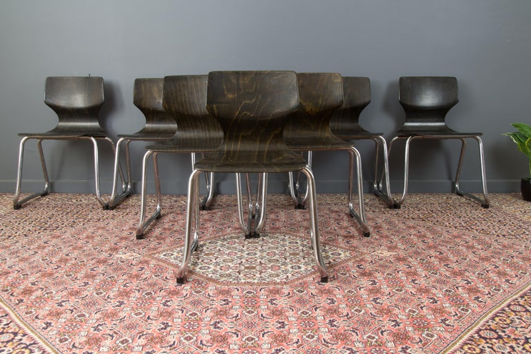 Mid-Century Modern Vintage German Chairs by Elmar Flötotto for Pagholz Flötotto, 1970s, Set of 8 For Sale