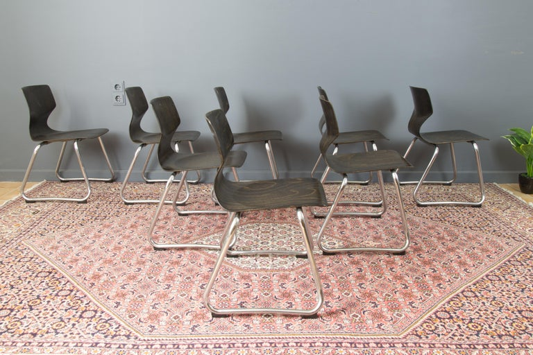 Late 20th Century Vintage German Chairs by Elmar Flötotto for Pagholz Flötotto, 1970s, Set of 8 For Sale