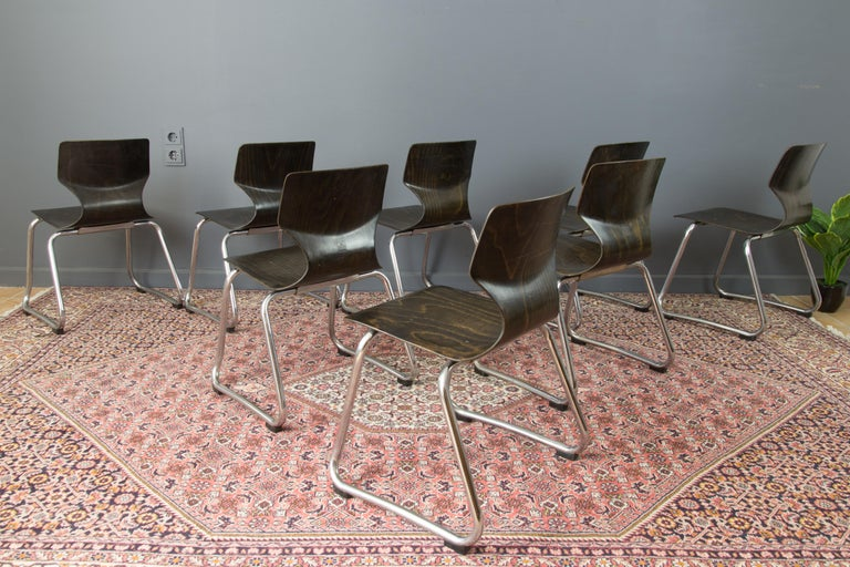Vintage German Chairs by Elmar Flötotto for Pagholz Flötotto, 1970s, Set of 8 For Sale 2