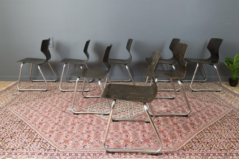 Vintage German Chairs by Elmar Flötotto for Pagholz Flötotto, 1970s, Set of 8 For Sale 3