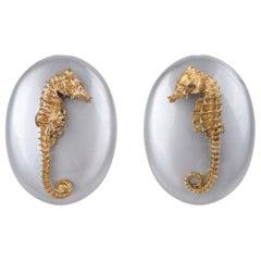 VINTAGE Gold Dipped Genuine Seahorse Skeleton Gray Lucite Disc Earrings