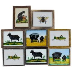 Vintage Indian Framed Animal Glass Paintings, 20th Century