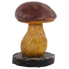 Vintage Instructional Mushroom Model