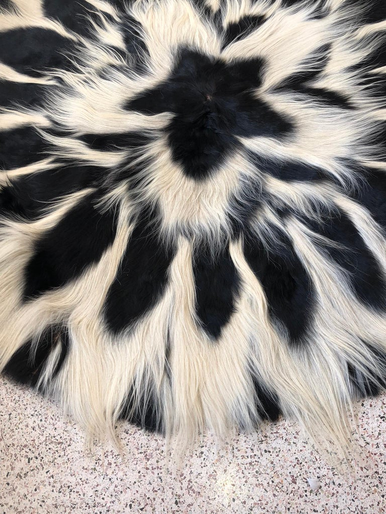 Vintage Large Circular Colobus Monkey Fur Floor Rug, circa 1969, Fully Lined For Sale 2