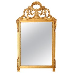 Vintage and Large French Louis XVI Style Giltwood Wall Mirror, 20th Century