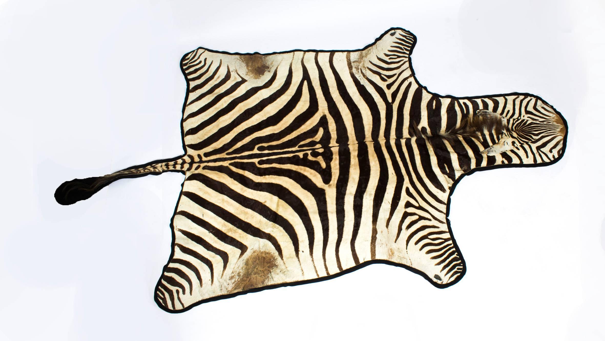 angeles repair img hide los and skin cleaning in zebra master rug