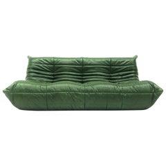 Vintage Large Togo in Forest Green Leather by Michel Ducaroy for Ligne Roset