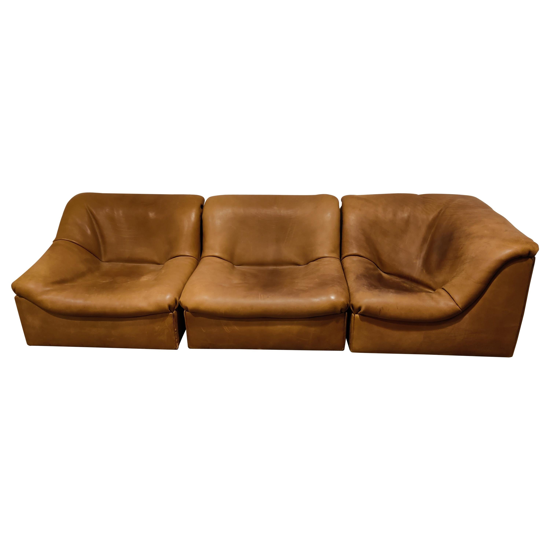 Vintage Leather Ds46 Modular Three Piece Sofa by De Sede, 1970s