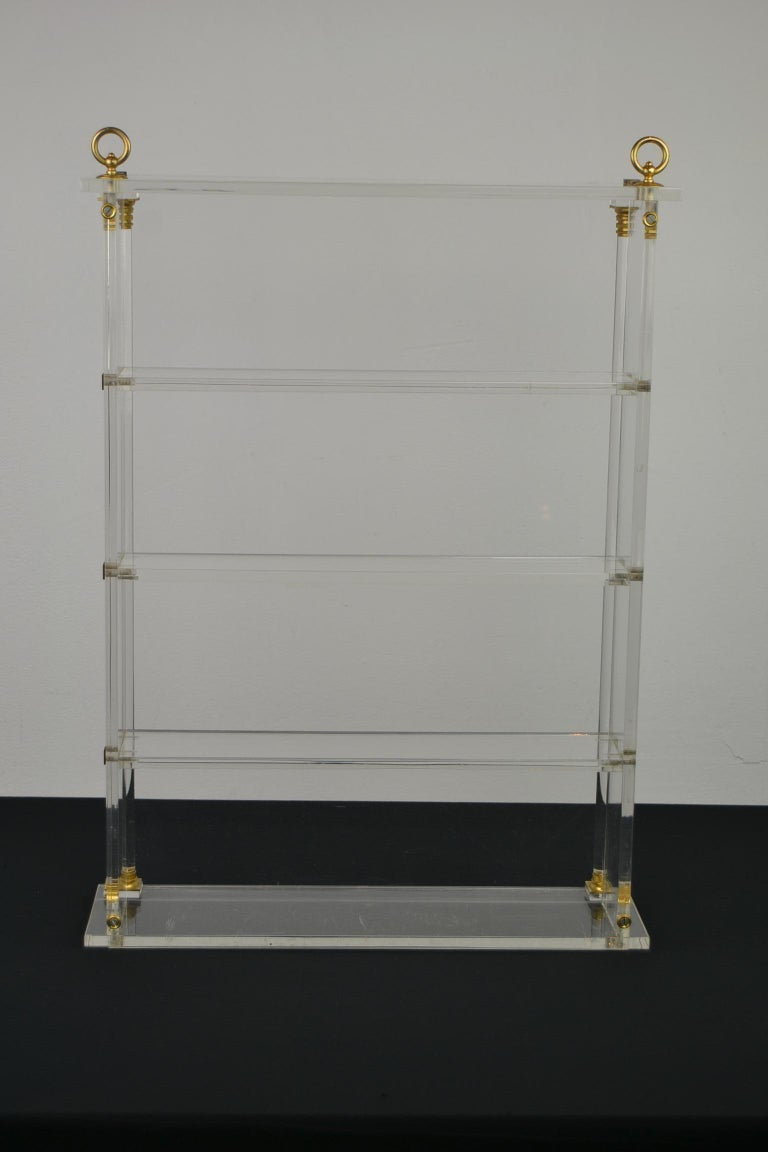Vintage Lucite Wall Rack or Open Showcase For Sale 11