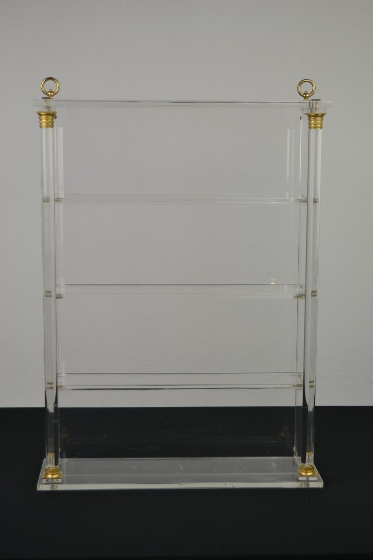 Modern Vintage Lucite Wall Rack or Open Showcase For Sale