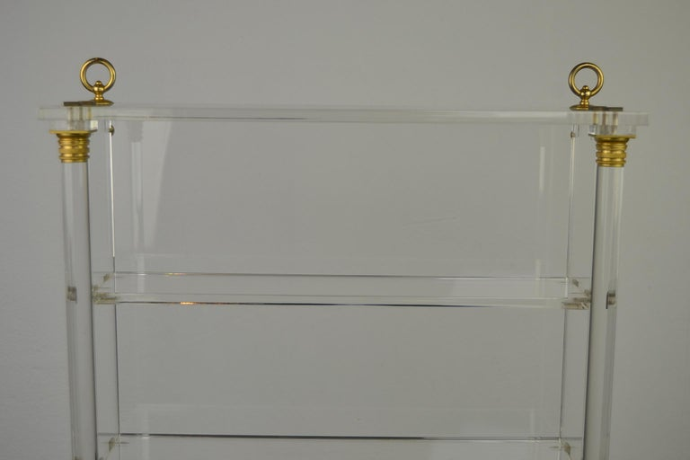 European Vintage Lucite Wall Rack or Open Showcase For Sale