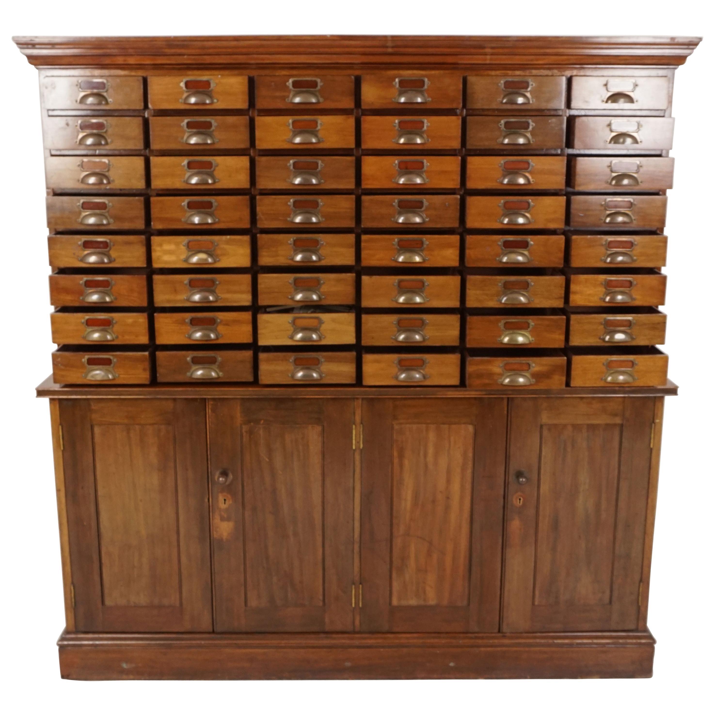 Vintage Walnut 48 Drawer File Cabinet, Cupboard, Scotland 1920, B2549