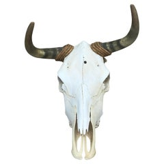 Vintage Mid 20th Century Cow Skull/Horns Wrapped with Rope