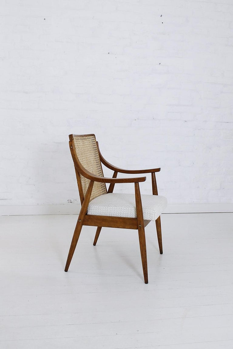 Vintage Mid-Century Modern Cane Back Armchair Hungary, 1960s In Good Condition For Sale In Debrecen-Pallag, HU