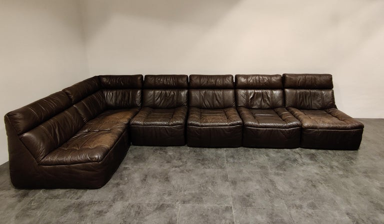 Mid-Century Modern Vintage Modular Leather Sofa by Rolf Benz, 1970s