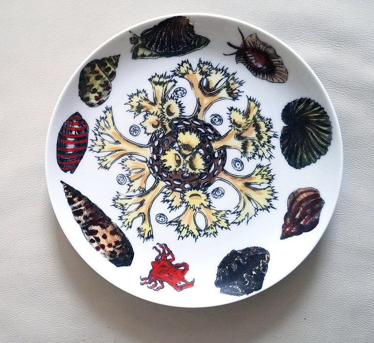 Pair of Vintage Piero Fornasetti Porcelain plates, Decorated with sea anemones, urchins and shells, #7 & #12 from Conchiglie Pattern, circa 1960-1970s.  The Fornasetti plate is decorated in the Conchiglie pattern which depicts different
