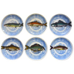 Vintage Piero Fornasetti Trompe L'oeil Set of Piscibus Plates- Set of Six.