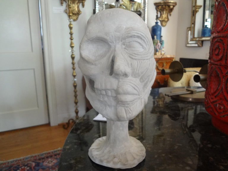 Interesting vintage plaster anatomical skull model. This great plaster skull bust model is in very good condition and dates to the 1940s. A real conversation piece of decorative sculpture!