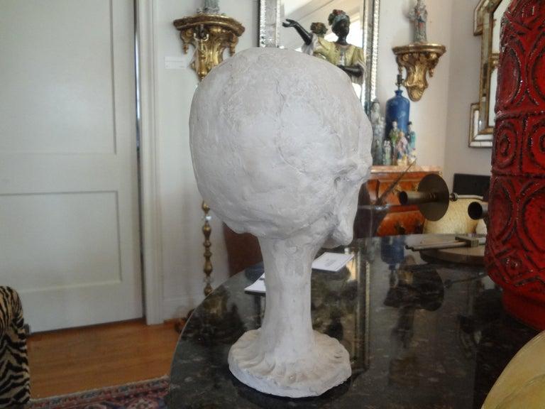 Vintage Plaster Anatomical Skull Models For Sale 2