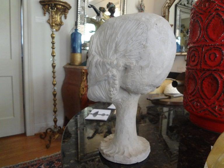 Vintage Plaster Anatomical Skull Models For Sale 3