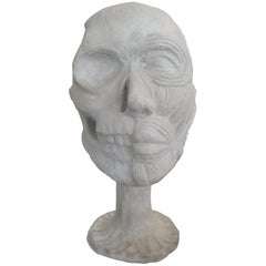 Vintage Plaster Anatomical Skull Model