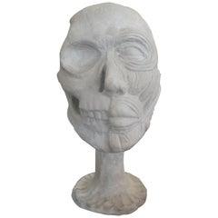 Vintage Plaster Anatomical Skull Models