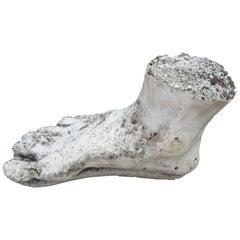 Vintage Plaster Foot of Hercules