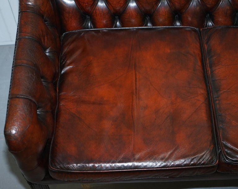 Vintage Restored Chesterfield Brown Leather Gun Suite 3-Seat Sofa and Armchair For Sale 2