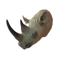 Vintage Rhinoceros Head Sculpture in Fiberglass, circa 1970