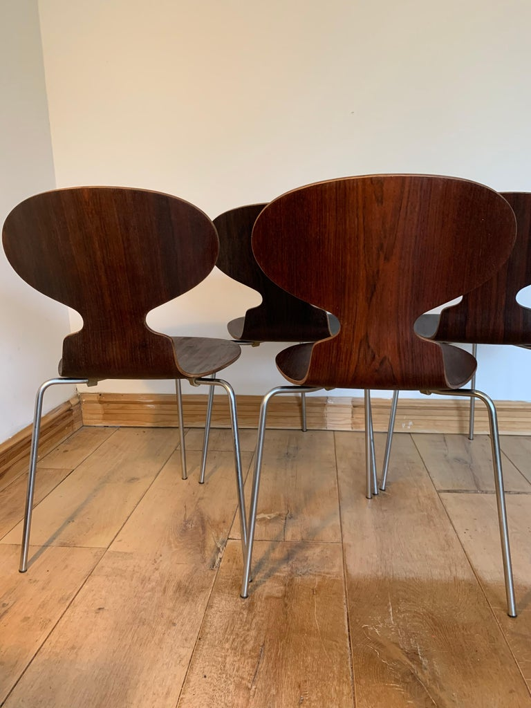20th Century Vintage Rosewood Ant Chairs by Arne Jacobsen for Fitz Hansen For Sale 2