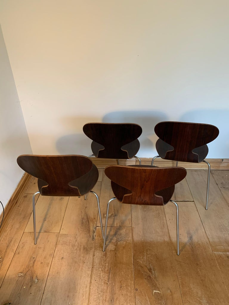 20th Century Vintage Rosewood Ant Chairs by Arne Jacobsen for Fitz Hansen For Sale 3