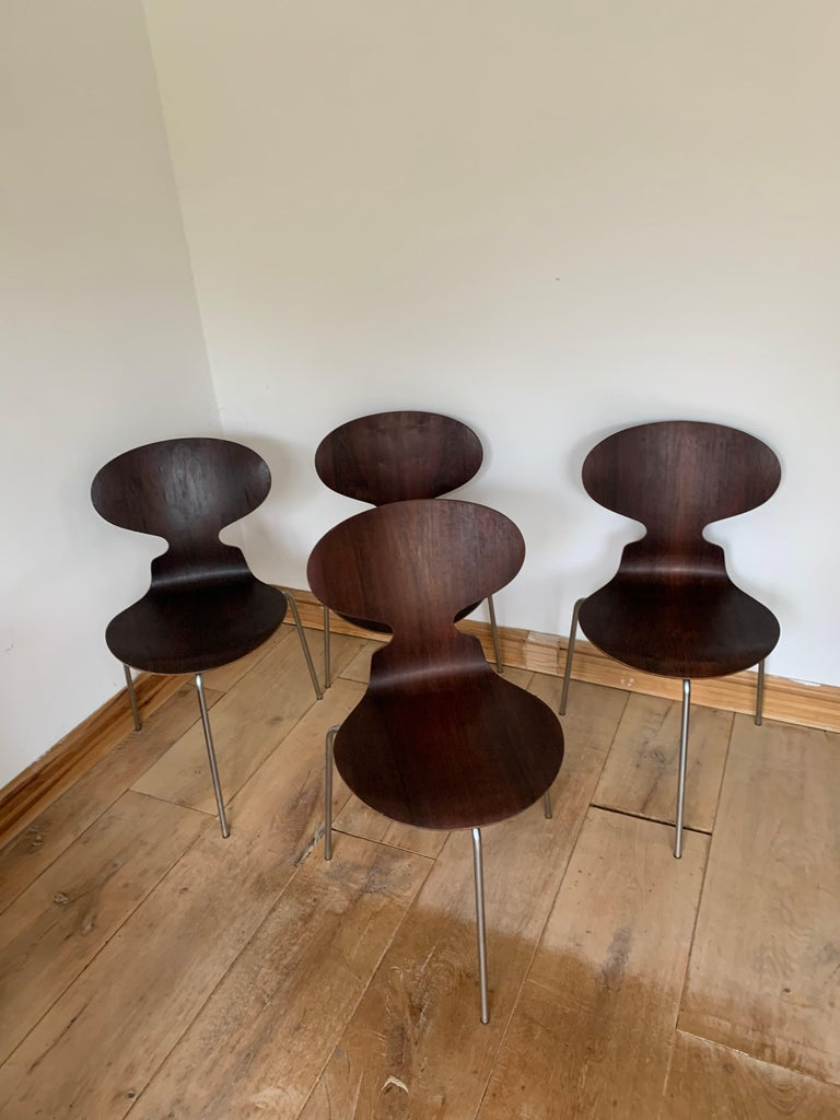 20th Century Vintage Rosewood Ant Chairs by Arne Jacobsen for Fitz Hansen For Sale 9