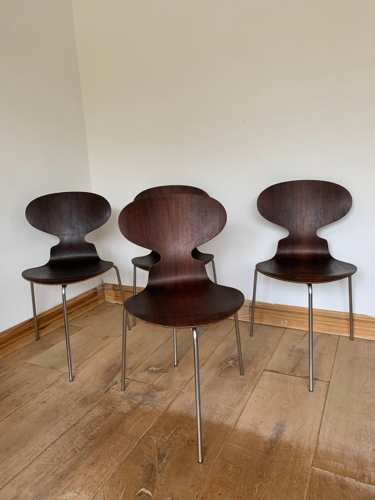 20th Century Vintage Rosewood Ant Chairs by Arne Jacobsen for Fitz Hansen For Sale 10