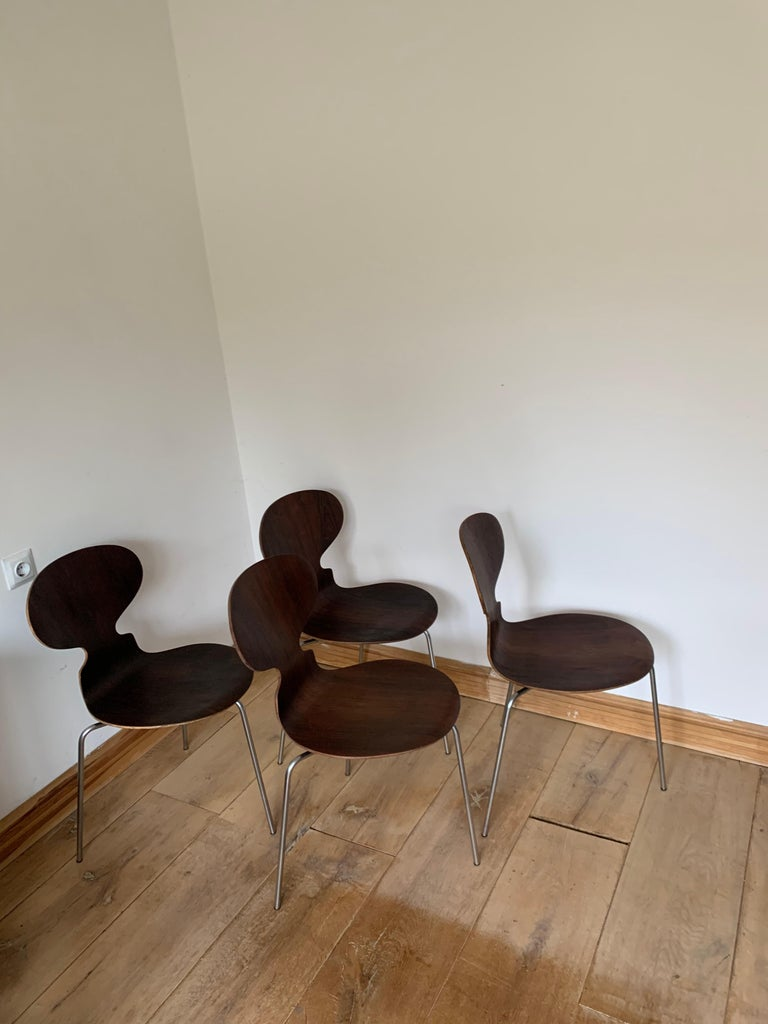 20th Century Vintage Rosewood Ant Chairs by Arne Jacobsen for Fitz Hansen For Sale 11