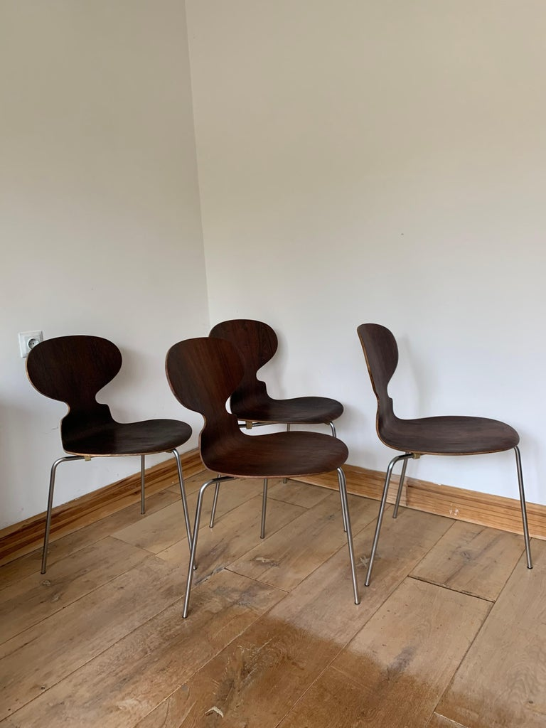 20th Century Vintage Rosewood Ant Chairs by Arne Jacobsen for Fitz Hansen For Sale 12