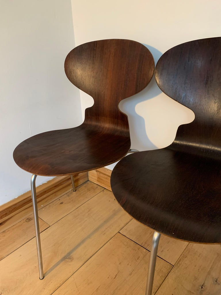 Scandinavian Modern 20th Century Vintage Rosewood Ant Chairs by Arne Jacobsen for Fitz Hansen For Sale